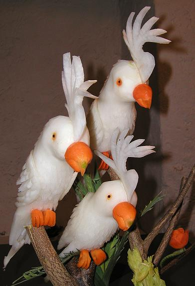 Kakadu-Familie